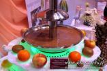 inspiracje-weselne.pl - Wynajem fontanny czekoladowej, catering na wesele