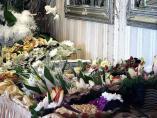 Portal ślubny, Dom Weselny Omega Grzybowo Kołobrzeg, organizacja wesel