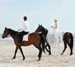 Krótki przewodnik po ślubach bezstresowych. Część 2